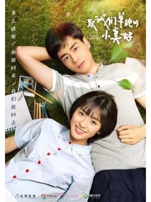 CH881 : A Love So Beautiful (ซับไทย) DVD 5 แผ่น