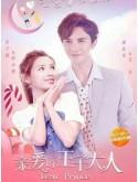 CH941 : ซีรี่ย์จีน Dear Prince (ซับไทย) DVD 4 แผ่น