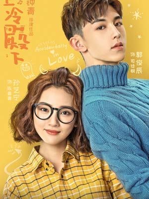 CH946 : ซีรี่ย์จีน Accidentally in Love (ซับไทย) DVD 6 แผ่น