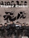 CH948 : ซีรี่ย์จีน หน่วยพยัคฆ์เสือบิน Tiger Cubs (พากย์ไทย) DVD 3 แผ่น