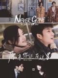 CH988 : ซีรี่ย์จีน Never Gone (2018) (ซับไทย) DVD 5 แผ่น