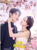 CH997 : ซีรี่ย์จีน Unexpected ผ่านมิติมารักเธอ (2018) (ซับไทย) DVD 4 แผ่น