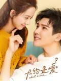 CHH1008 : ซีรี่ย์จีน About Is Love (ซับไทย) DVD 6 แผ่น