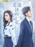 CHH1048 : ซีรี่ย์จีน Walk Into Your Memory (ซับไทย) DVD 4 แผ่น