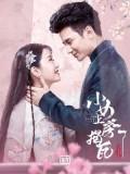 CHH1104 : The Sweet Girl วุ่นรักสลับร่าง (2020) (ซับไทย) DVD 4 แผ่น