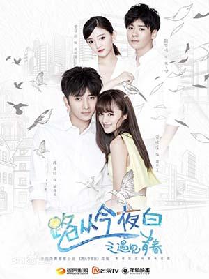 CHH1112 : Infringement: Cheesy Drama (ซับไทย) DVD 6 แผ่น