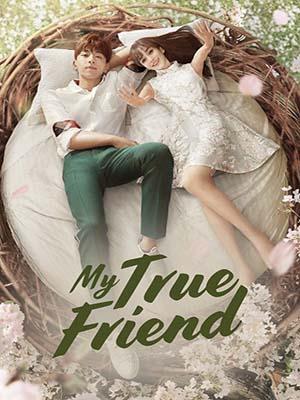CHH1120 : My True Friend เพื่อนที่รัก (ซับไทย) DVD 8 แผ่น