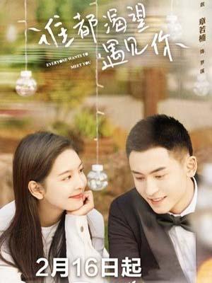 CHH1138 : ซีรี่ย์จีน Everyone Wants To Meet You ใครๆ ก็อยากพบเธอ (2020) (ซับไทย) DVD 6 แผ่น