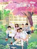 CHH1165 : ซีรี่ส์จีน The Love Equations หวานนักเมื่อรักหวนคืน (ซับไทย) DVD 5 แผ่น