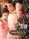 CHH1169 : The Romance of Tiger and Rose ข้านี่เเหละองค์หญิงสาม (ซับไทย) DVD 4 แผ่น