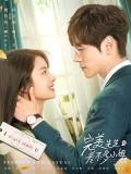 CHH1263 : Perfect and Casual (2020) (ซับไทย) DVD 4 แผ่น