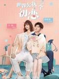 CHH1278 : Lucky's First Love (2019) (ซับไทย) DVD 4 แผ่น