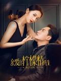 CHH1399 : Plot Love แผนรักลวงใจ (2021) (ซับไทย) DVD 4 แผ่น