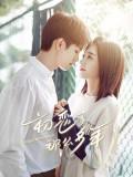 CHH1404 : First Romance กาลครั้งหนึ่งถึงรักแรก (2020) (พากย์ไทย) DVD 4 แผ่น