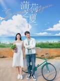 CHH1411 : Summer Again ฤดูร้อนย้อนวัยรัก (2021) (ซับไทย) DVD 3 แผ่น