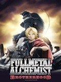 ct0265 : การ์ตูน Fullmetal Alchemist: Brotherhood แขนกล คนแปรธาตุ DVD 16 แผ่น