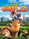 ct1291 : หนังการ์ตูน The Wild เดอะ ไวล์ด แก็งค์เขาดินซิ่งป่วนป่า (2006) DVD 1 แผ่น