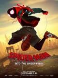 ct1328 : Spider-Man Into the Spider-Verse สไปเดอร์-แมน ผงาดสู่จักรวาล-แมงมุม DVD 1 แผ่น