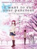 ct1336 : หนังการ์ตูน I Want To Eat Your Pancreas เพราะหัวใจใกล้ตับอ่อน (2018) DVD 1 แผ่น
