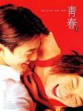 km139 : หนังเกาหลี Plum Blossom วังวนรัก วังวนลวง DVD 1 แผ่น
