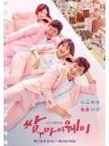 krr1510 : ซีรีย์เกาหลี Fight For My Way (ซับไทย) DVD 4 แผ่น