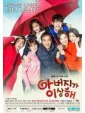 krr1545 : ซีรีย์เกาหลี Father Is Strange (ซับไทย) DVD 13 แผ่น