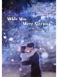 krr1558 : ซีรีย์เกาหลี While You Were Sleeping (ซับไทย) DVD 4 แผ่น