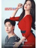 krr1570 : ซีรีย์เกาหลี Meloholic (ซับไทย) DVD 3 แผ่น