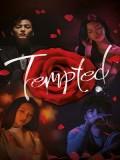 krr1616 : ซีรีย์เกาหลี Tempted (The Great Tempter) (ซับไทย) DVD 4 แผ่น
