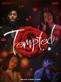 krr1687 : ซีรีย์เกาหลี Tempted เกมรักกลลวง (พากย์ไทย) DVD 4 แผ่น