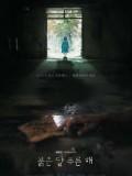 krr1727 : ซีรีย์เกาหลี Children of Nobody (ซับไทย) DVD 4 แผ่น