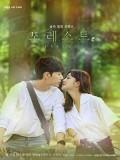 Krr1886 : ซีรีย์เกาหลี Forest (ซับไทย) DVD 4 แผ่น