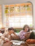 Krr1897 : ซีรีย์เกาหลี Meow, the Secret Boy (ซับไทย) DVD 4 แผ่น