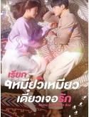 krr1974 : ซีรีย์เกาหลี Meow, The Secret Boy เรียกเหมียวเหมียว เดี๋ยวเจอรัก (พากย์ไทย) DVD 4 แผ่น