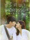 krr1993 : ซีรีย์เกาหลี Forest ปริศนา ป่าอัศจรรย์ (พากย์ไทย) DVD 4 แผ่น