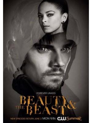 se1653 : ซีรีย์ฝรั่ง Beauty And The Beast Season 4 [ซับไทย] 4 แผ่น