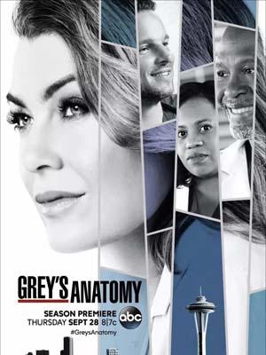 se1726 : ซีรีย์ฝรั่ง Grey's Anatomy Season 14 (ซับไทย) DVD 5 แผ่น