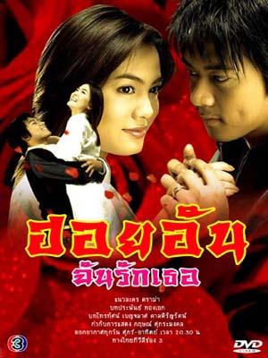 st0195 : ละครไทย ฮอยอันฉันรักเธอ DVD 3 แผ่น