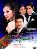 st0313 : ละครไทย ลูกไม้เปลี่ยนสี DVD 3 แผ่น