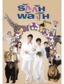 st1488 : รักกันพัลวัน DVD 5 แผ่น