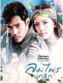st1560 : ลมไพรผูกรัก (My Hero วีรบุรุษสุดที่รัก) DVD 2 แผ่น