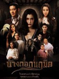 st1573 : ละครไทย บางกอกนฤมิต DVD 5 แผ่น