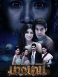 st1595 : ละครไทย นางบาป DVD 4 แผ่น