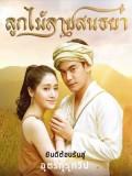 st1604 : ละครไทย ลูกไม้ลายสนธยา DVD 4 แผ่น