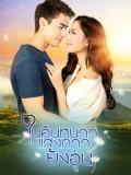 st1667 : ละครไทย ในคืนหนาว แสงดาวยังอุ่น DVD 4 แผ่น