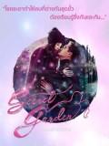 st1731 : ละครไทย อลเวงรักสลับร่าง Secret Garden DVD 4 แผ่น