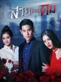 st1754 : ละครไทย สวยซ่อนคม DVD 5 แผ่น