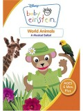 ft062 :Baby Einstein  25  แผ่น