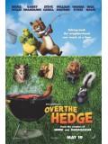 am0130 : การ์ตูน Over the Hedge แก๊งค์สี่ขา ข้ามป่ามาป่วนเมือง  DVD Master 1 แผ่นจบ