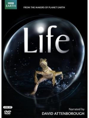 ft081 : สารคดี Life BBC อัศจรรย์แห่งชีวิต 4 แผ่นจบ